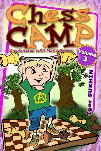 Chess Camp Volume 3: Checkmates With Many Pieces